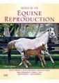 Equine veterinary medicine - Large animals - Veterinary Medicine - Medicine - Non Fiction - Books 2