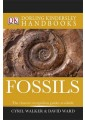 Rocks, minerals & fossils - Natural History, Country Life - Sport & Leisure  - Non Fiction - Books 12